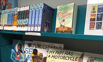 Reading recommendations books on bookshelf